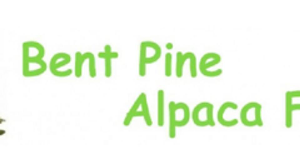 Bent Pine Alpaca Farm Open House