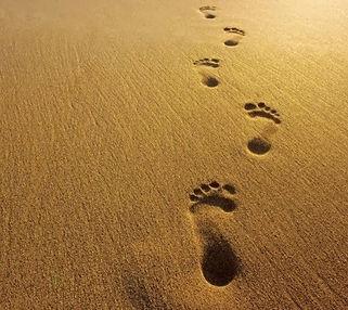 voetstappen op strand.jpg