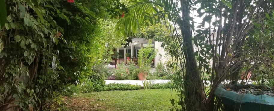 Jardin #1  foto #2 Golden Age Merida