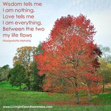 Wisdom Tells Me.jpg