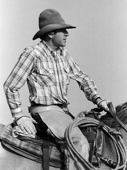 Ted Parker 1984