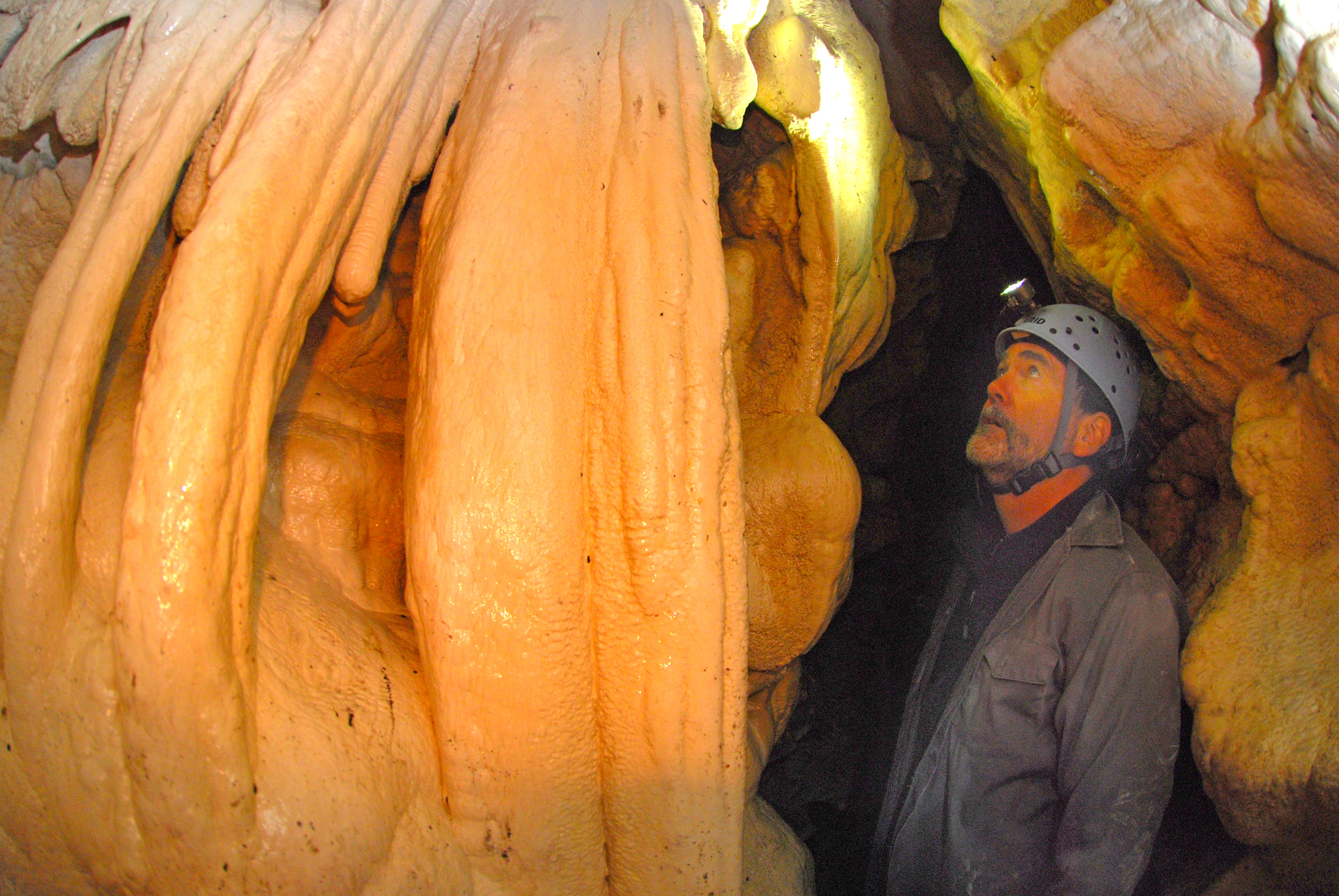 Root Cave