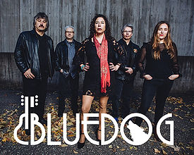 Bluedog band photo with hands on hips or pockets and logo at bottom of photo