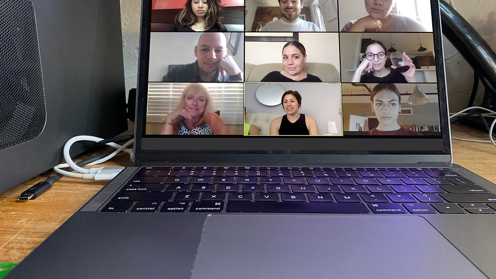 Online Group Class 15 or More Students