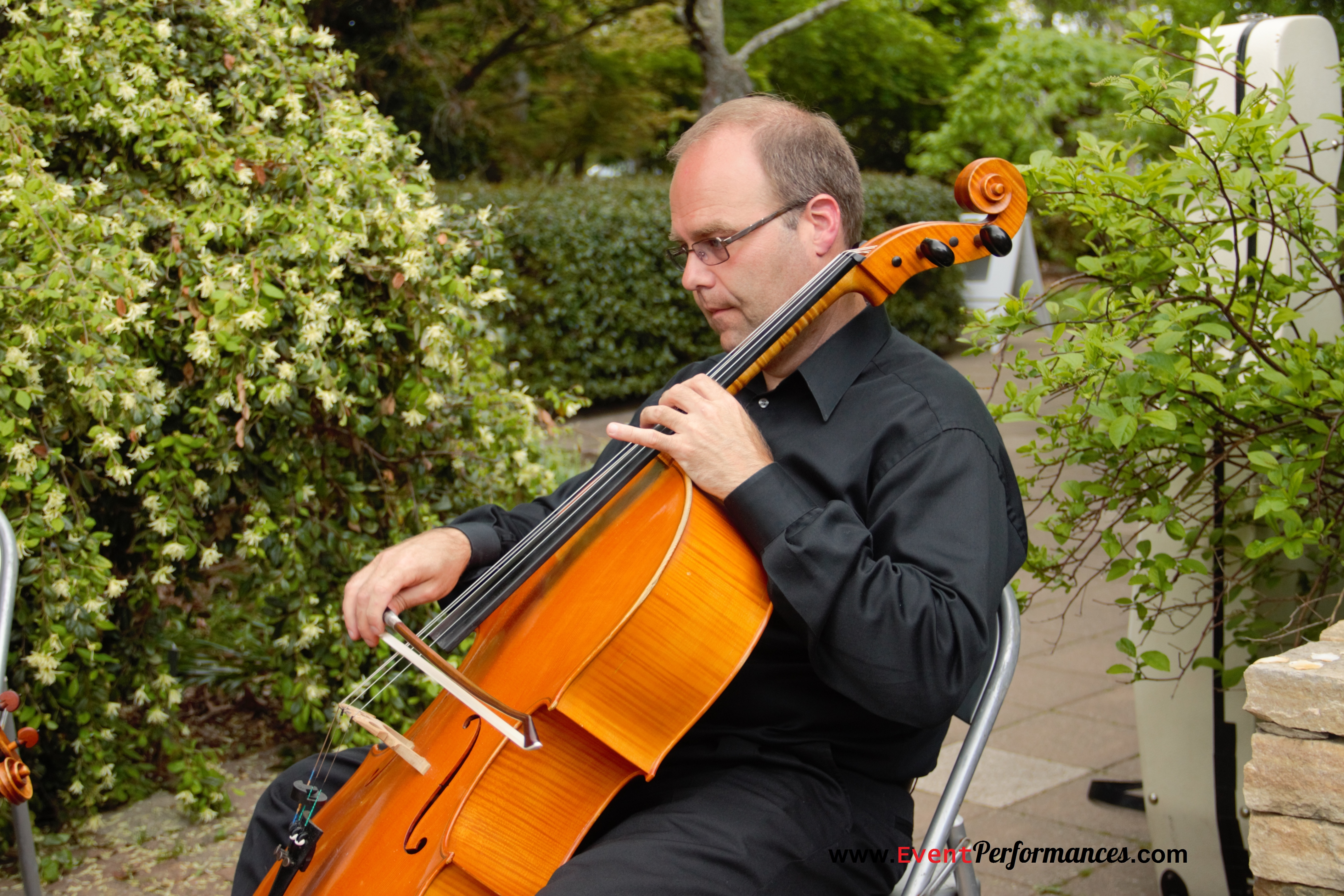 Roman - Cellist