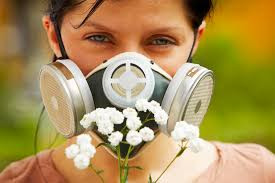 Hay Fever Remedies