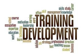 Image result for trainings