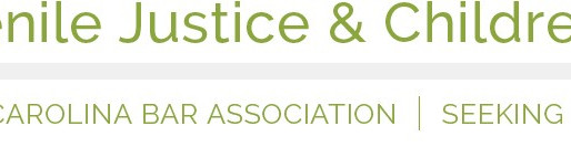 Save the Date: NCBA Juvenile Justice & Children's Rights Section Social