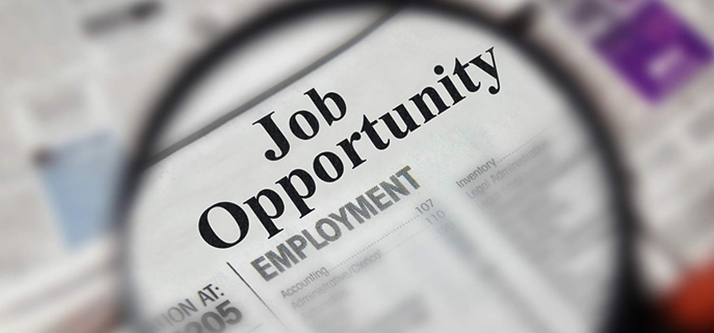 Image result for job opportunity