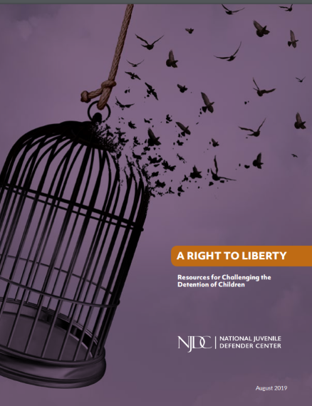 njdc right to liberty (2)
