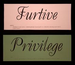Furtive Privilege