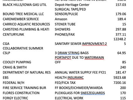 REGULAR MEETING MINUTES     July 8, 2020