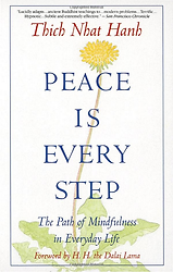 Peace-Is-Every-Step_book.png
