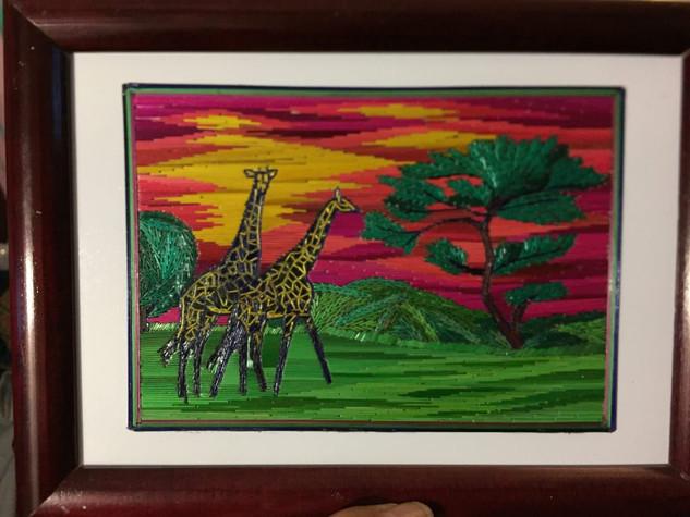 Giraffes Popotillo $480 pesos plus shipping (mas envio)