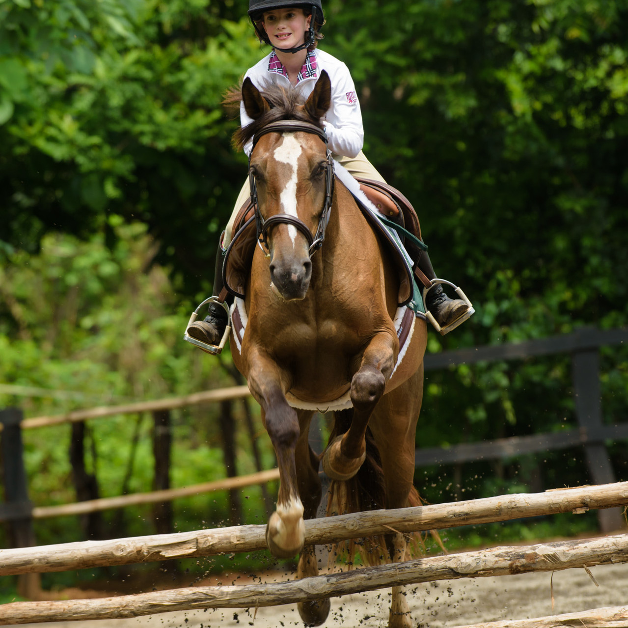 Jumping strong at Costa Rica Equestrian Vacations