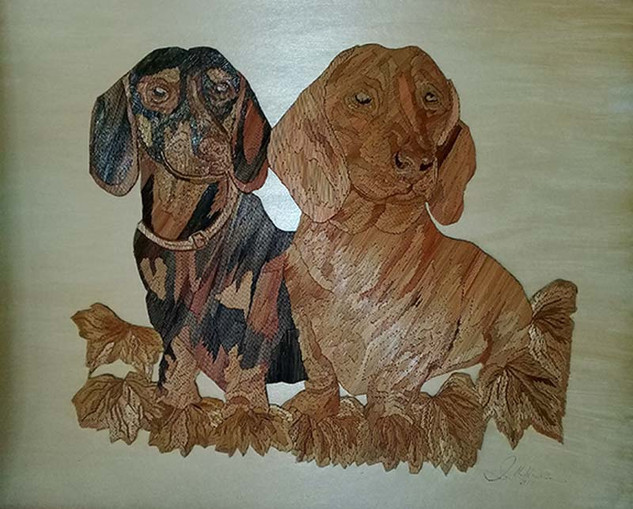 Dachshunds $