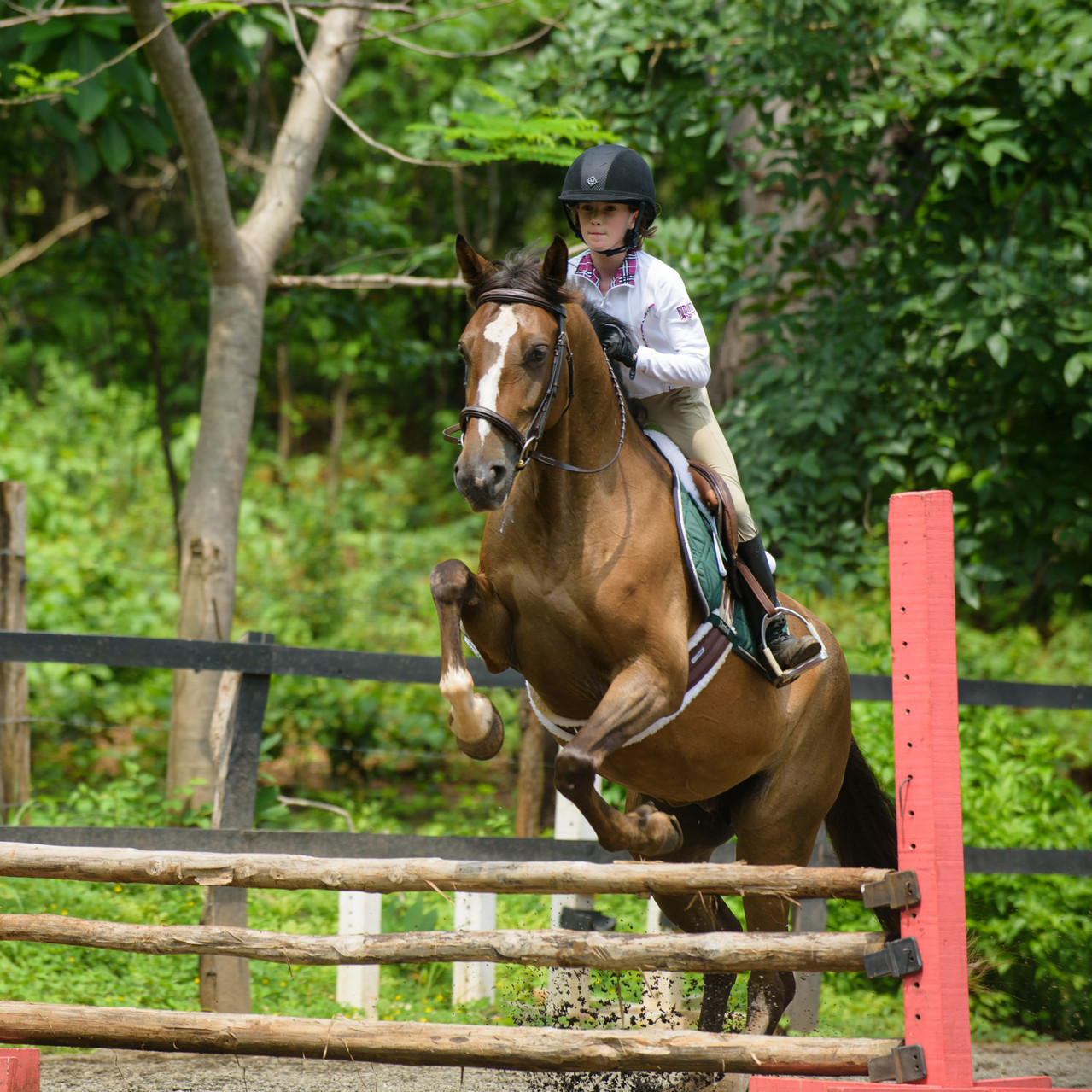 Ready, set, jump at Costa Rica Equestrian Vacations
