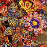 Flowers-Tapalpa.jpg