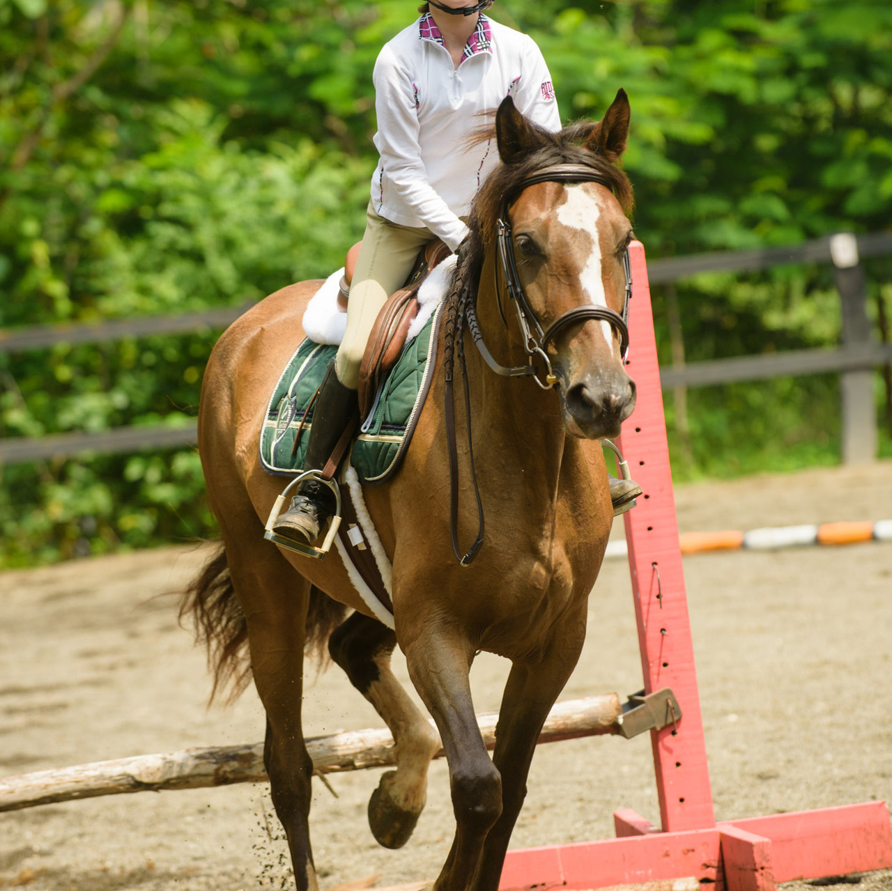 Taking off at Costa Rica Equestrian Vacations