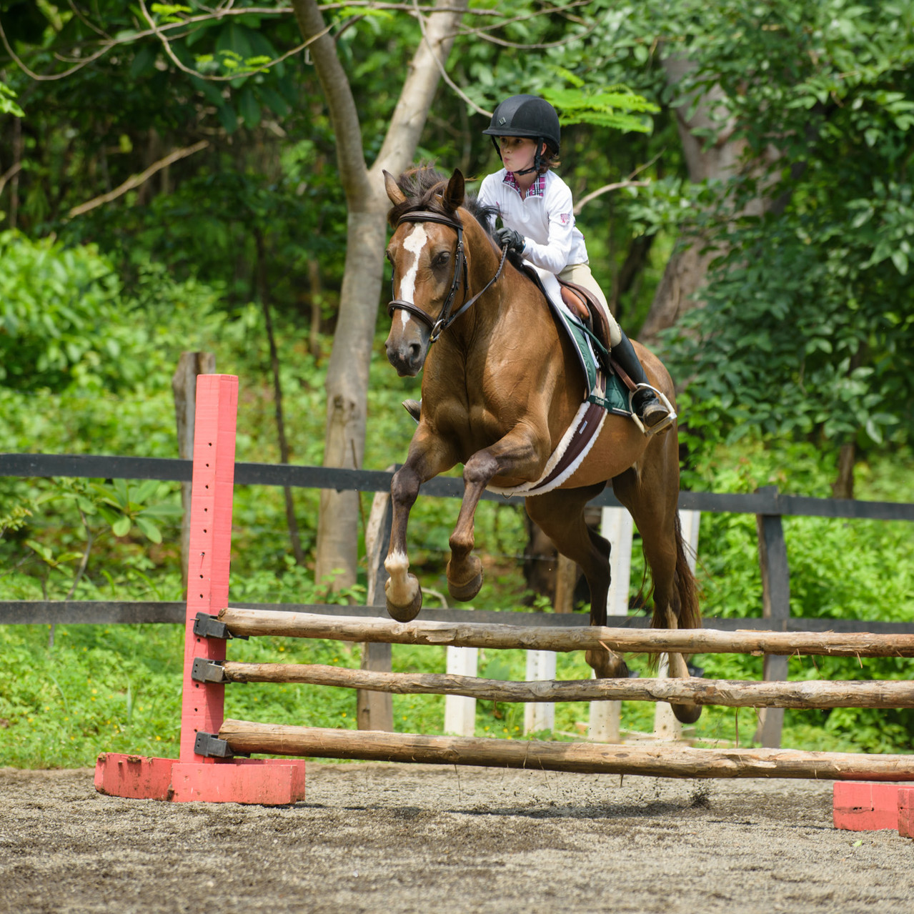 Teamwork at Costa Rica Equestrian Vacations