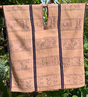 Endangered: Huipil $3,600 pesos plus shipping (mas envio)