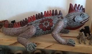 Iguana $6 000 pesos plus shipping (mas envio)