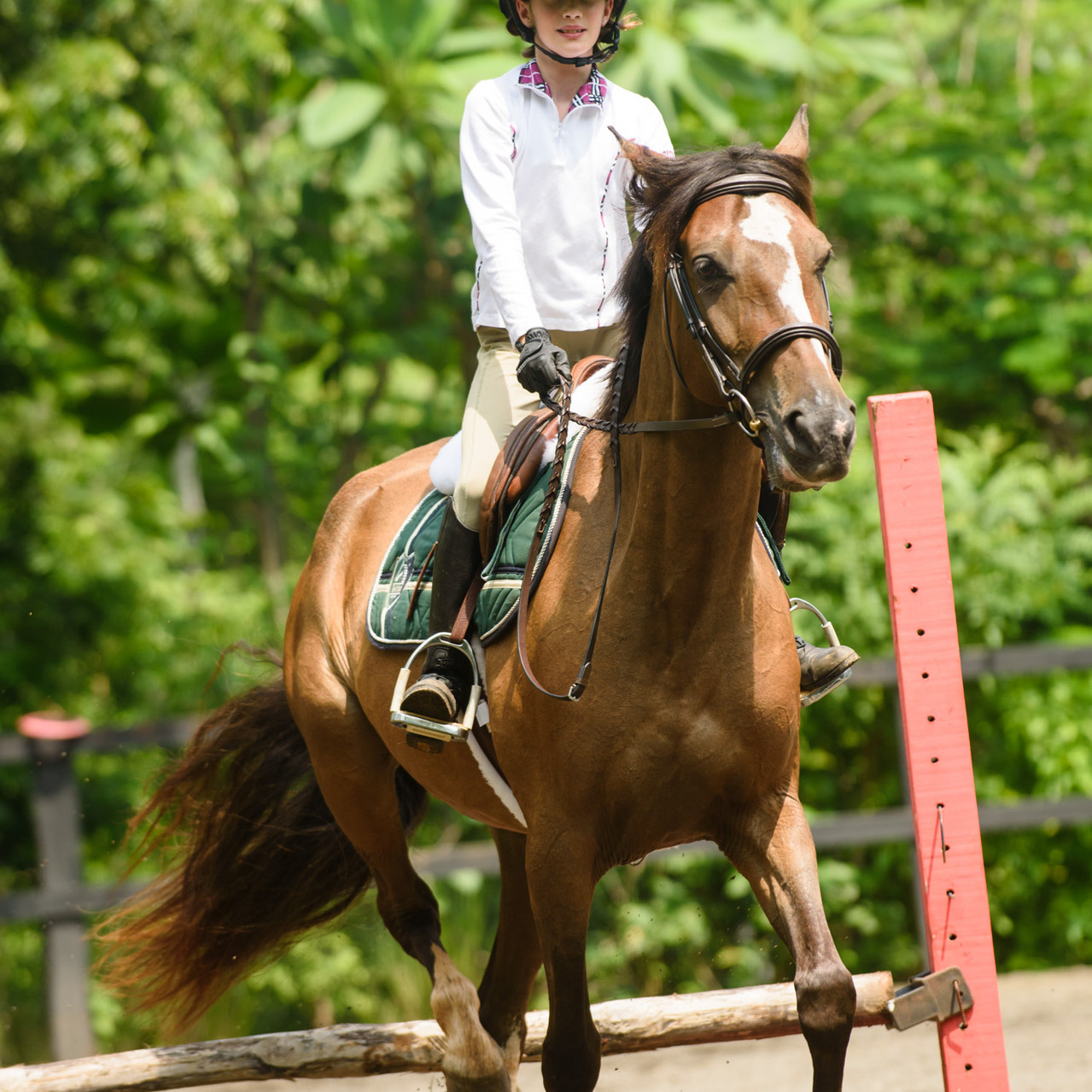 Riding proud at Costa Rica Equestrian Vacations