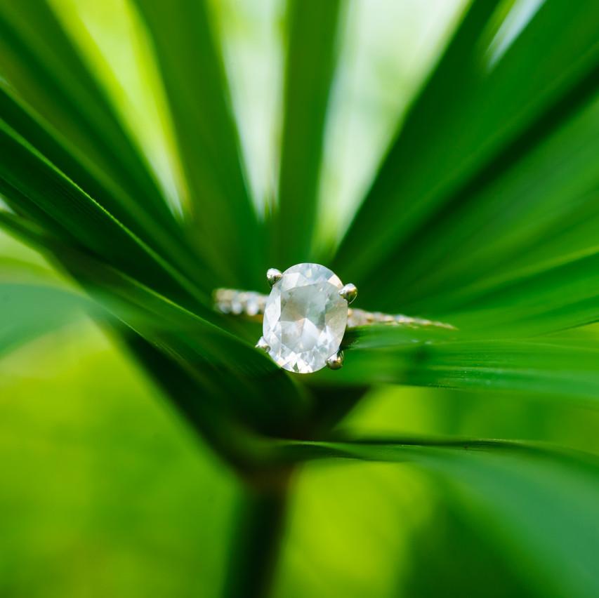 Costa Rica wedding inspiration