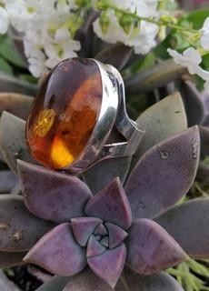 Silver & amber ring $950 pesos plus shipping (mas envio)