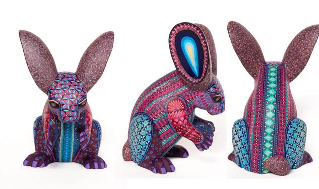 """""""Enchanted rabbit """" $15,000 pesos plus shipping (mas envio)"""
