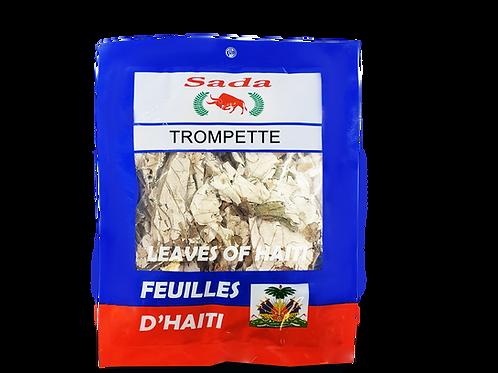 Sada Haitian Leaves - Trompette