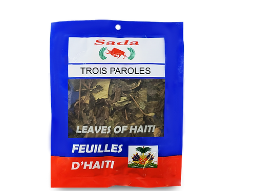 Sada Haitian Leaves - Trois paroles