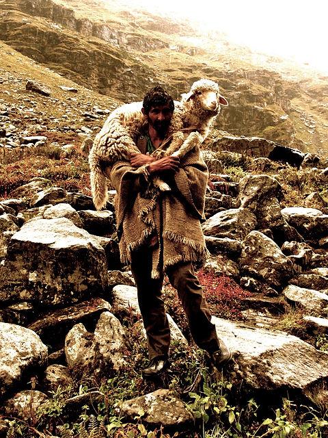 Shepherd_on_the_way_to_Hampta_Pass_2 3 2