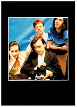 Debut Tour Programme, Japan 1993 pg21