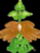 logo_trasparent.png