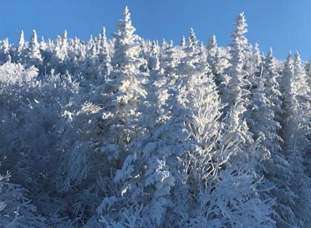 A preview of the 20/21 No Boundaries ski season