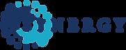 Synergy Gulf Logo