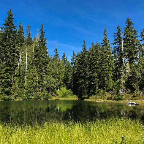 Deer Lake Olympic National Park Washington September 2018