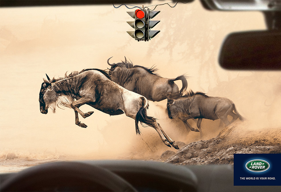 Land-Rover-Wildebeest-Crossing-Print-Cam