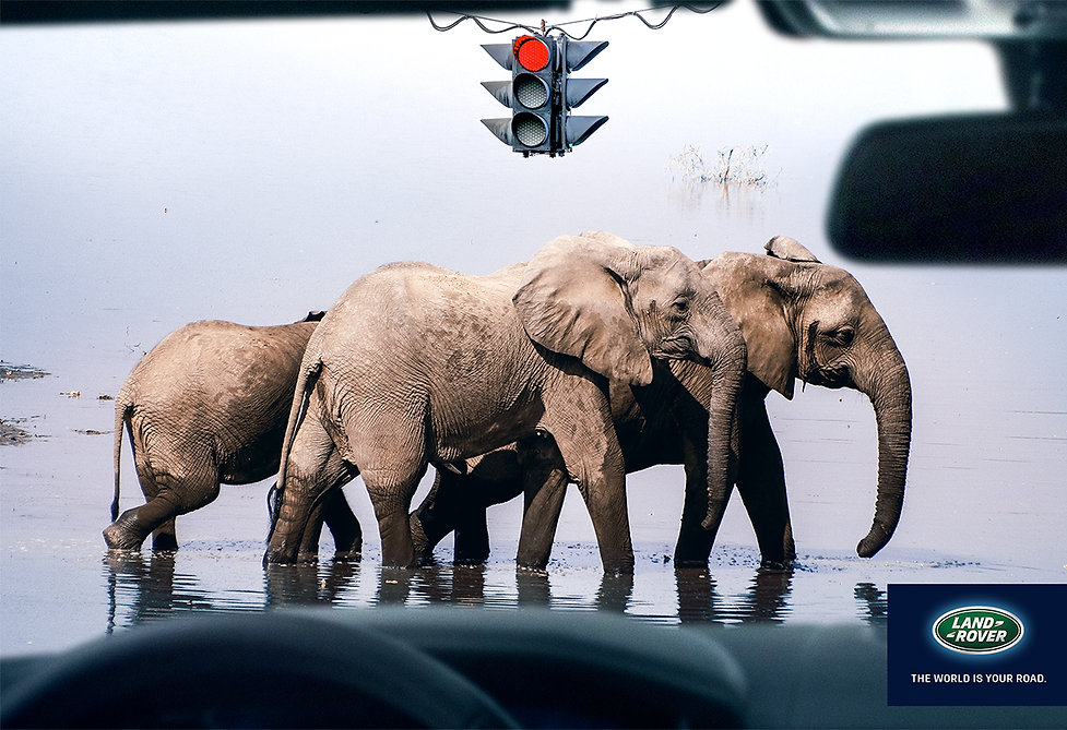 Elephants-Crossing-Land-Rover-Print-Camp