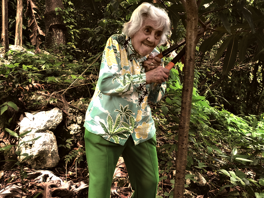 Portrait of old woman cutting branch in jungle.