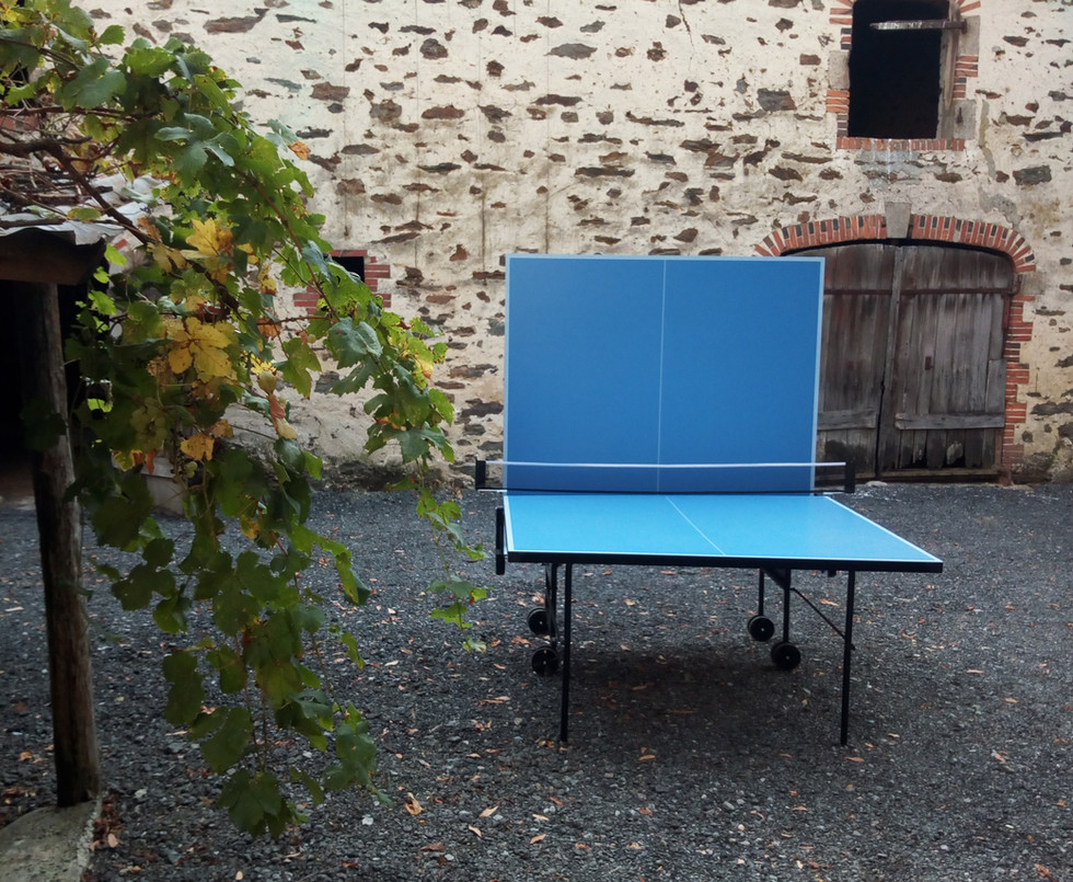 le figonier  table ping pong