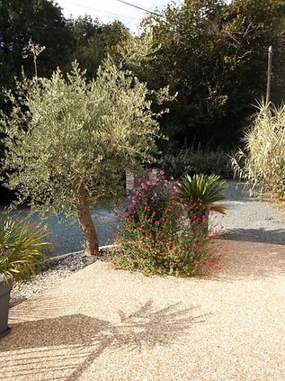 La Rocardiere  olivier