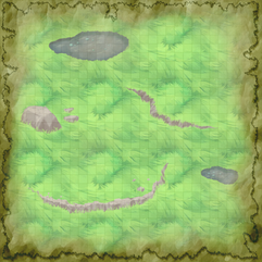 plains with rocks and puddles.png