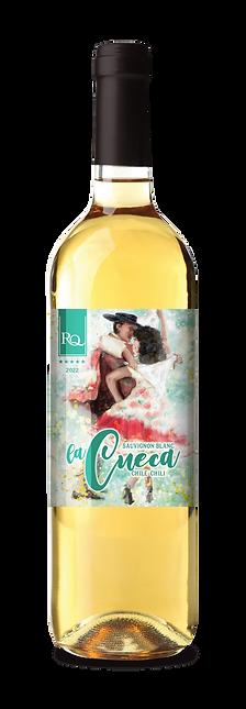2020-26_RQ22_Cueca_3D Bottle-04.png