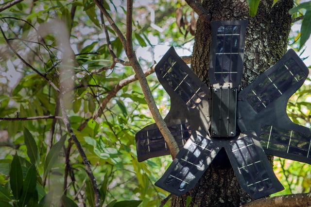 rainforest_connection_6-640x640