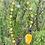 Thumbnail: Collier pierres fines etcristal, avec pendentifétoile.