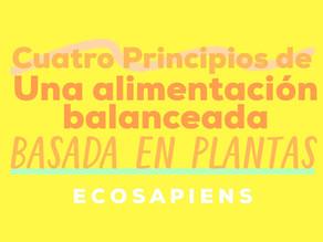 4 principios de una alimentación balanceada basada en plantas
