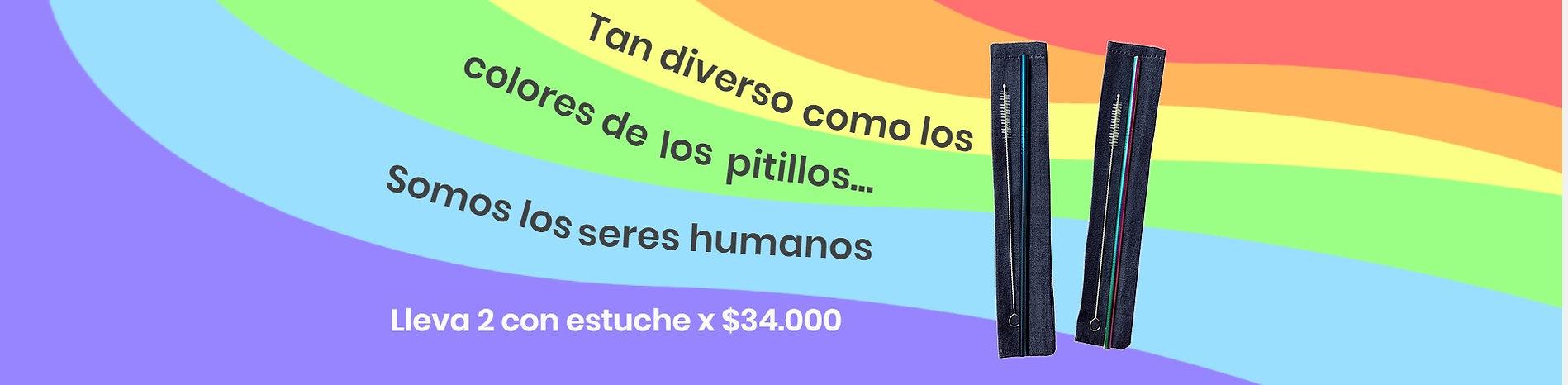 Banner Diversidad Pitillos.jpg