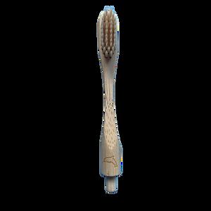 Cabeza-cepillo-bambu-tortuga.png